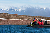 tourists watching Polar Bear from Zodiac, Spitsbergen, Norway