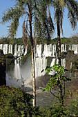 Amerika, Argentinien, Außen, Brasilien, Fallen, Farbe, Fluss, Flüsse, Herrlichkeit, Horizontal, Iguaçu, Iguassu, Iguazu Nationalpark, Landschaft, Landschaften, Nationalpark, Nationalparks, Natur, Parana, Reisen, Schaum, Südamerika, Tageszeit, Wasser, Wass