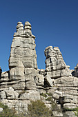 Erosion working on Jurassic limestones. This is the biggest Karstic landscape in Europe. The origin is the sea floor dating from 150 million years ago. Natural park of Torcal de Antequera. Antequera. Málaga province. Andalucia. Spain