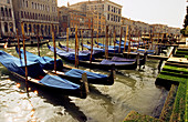 Rows of gondolas moored on the Grand Canal. Venice. Italy.