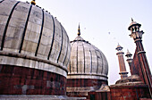 Jama Masjid Muslim style of architecture standing on 260 pillars supporting 15 domes New Delhi, India, Asia