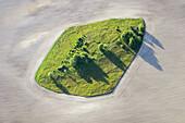 Agricultural landscape, green island in field. Säffle Värmland Sweden