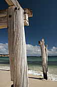 Weathered wooden pylons on the beach at Hamelin Bay, Western Australia. Australia