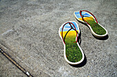 Ecological footprint: sandals depicting flowerfilled natural environment in highly urbanised concrete environment.