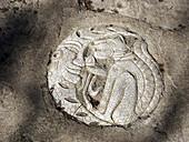 Jaguar Maya glyph from Yucatan Peninsula, Mexico