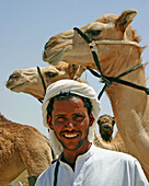 Smiling man with his herd of camels, Abu Dhabi, United Arab Emirates.