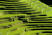 Rice terrace. Mouth of the Tiger. Scenic area. Yuanyang. China.