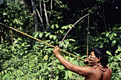 Sateré-Maué tribes man uses bow and arrow to hunt for food to feed his family in the Amazon.