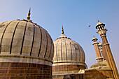 Domes and minarets of the prayer hall of the Jama Masjid Mosque, Delhi, India