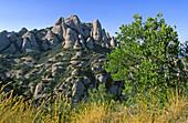 Landscape, Montserrat Natural Park, Barcelona, Spain