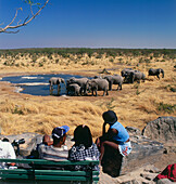 Tourists on a safari watch elephants at water hole, Etosha National Park, Namibia, Africa