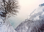 Snow covered chalk cliff, Jasmund National Park, Rugen island, Mecklenburg-Western Pomerania, Germany