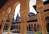 Court of the Lions, Alhambra. Granada. Spain