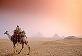Great Pyramids. Giza. Egypt