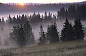 Early morning mist over low mountain range, Sumava National Park. Czech Republic