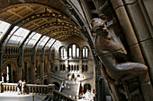 Great entrance hall of the Natural History Museum in Kensington, London. England, UK