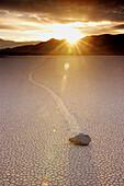Moving rock. Racetrack Playa. Death Valley National Park. California. USA