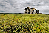Abandoned, Abandonment, Aged, Ancient, Cloudy, Color, Colour, Comunidad Valenciana, Country, Countryside, Daytime, Deserted, Europe, Exterior, Field, Fields, House, Houses, La Albufera, Natural Park, Natural Parks, Nature, Nobody, Odd, Old, Outdoor, Outdo