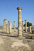 Ruins of old roman city of Baelo Claudia, Tarifa. Cadiz province, Andalusia, Spain