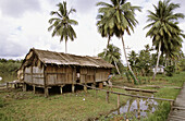 Traditional asmat house in Amborep village, Western Papuasia, Former Irian-Jaya, Indonesia
