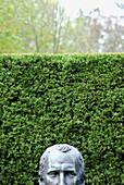 peeking statue head with hedge behind