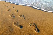footprints along shore on beach