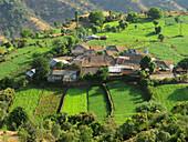 Top view of agricultural land and village on the way to Tapola, Mahabaleshwar, satara, Maharasthra, India.