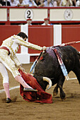 Action, Andalucia, Andalusia, Animal, Animal abuse, Animals, Blood, Bull, Bull-ring, Bull-rings, Bullfight, Bullfighter, Bullfighters, Bullfighting, Bullfights, Bullring, Bullrings, Bulls, Color, Colour, Cruel, Cruelty, Daytime, Europe, Exterior, Folk, Fo