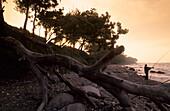 Küstenlandschaft mit Angler am Abend, Insel Fehmarn, Schleswig-Holstein, Deutschland, Europa