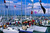 Sailing boats at marina during Kiel week, Kiel, Schleswig Holstein, Germany, Europe