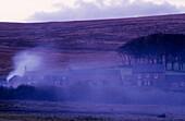 Europe, Great Britain, England, Devon, Dartmoor, Powder Mill
