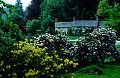 Europe, England, Wiltshire, Stourhead Garden