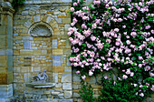 Europe, England, Kent, Hever, Hever Castle, Gardens, Flowers and fountain