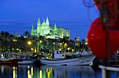 Europe, Spain, Majorca, Palma, Cathedral, La Seu