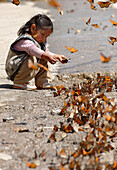 Young girl playing with monarch butterflies, San Luis, Mexico