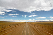 Road, ruta 40, Patagonia, Argentina, South America