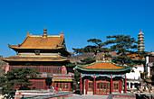 Xumifoshou Zhi Miao (Temple of Happiness and Longevity). Chendge. Hebei province. China