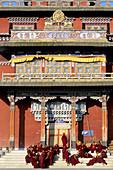 Tibetan Buddhist monastery. Bodhnath. Kathmandu Valley, Nepal.
