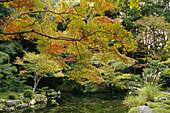 Nanzen-in garden in autumn, Nanzen-ji, Kyoto. Japan