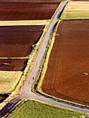 Grain fields. Cuenca province. Spain