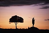 Maasai silhouette in African landscape. Masai Mara, Kenya