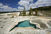 Tortoise shell spring, pool. Yellowstone National Park. Wyoming. USA