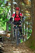 Junge Frau beim Mountainbiken über Wurzeln im Wald, Wendelsteinregion, Bayerische Voralpen, Bayerische Alpen, Oberbayern, Bayern, Deutschland
