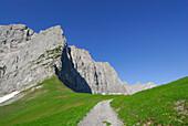 path in alpine pasture leading towards mountain range, notch Hohljoch, Karwendel range, Tyrol, Austria