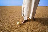 Cucurbitaceae family non-edible fruit is the only production of this desert. Fezzan region. Sahara desert. Libia.