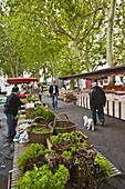 Market of Quai Saint-Antoine, Lyon. Rhône-Alpes, France