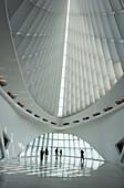 Quadracci Pavilion, Art Museum, Milwaukee, Wisconsin, USA