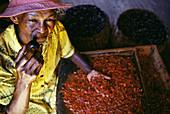 Nutmeg and mace. Grenada, Caribbean