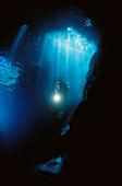 Diving. Ria of Vigo, Pontevedra province, Galicia, Spain