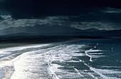 Europe, Great Britain, Ireland, Co. Kerry, Dingle peninsula, Inch Inch Strand